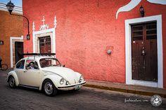 Hier findest Du unsere persönlichen Reisetipps für Deine Yucatan Rundreise - Sehenswürdigkeiten in Mexiko die fast keiner kennt...