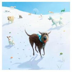 Snowballs by Stephen Hanson