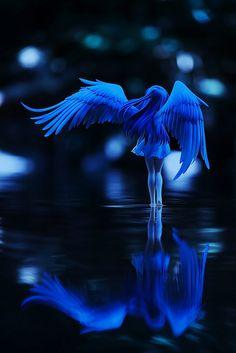 ˚Moonlight Angel