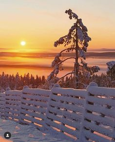 Show Me Some, Sunset Lover, Nature Photography, Mountains, Day, Winter, Travel, Lapland Finland, Instagram