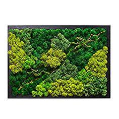 Backyard Garden Design, Lawn And Garden, Indoor Garden, Garden Art, Garden Paths, Moss Wall Art, Moss Art, Diy Wall, Wall Decor