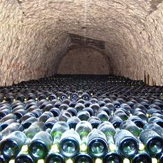 Taittinger Champagne Cave in Reims, France.