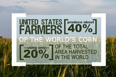 US Farmers produce about 40% of the World's #corn using only 20% of the total area harvested in the world.