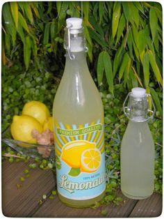 Zitronen-Ingwer-Wasser - Immun-Booster für die kalte Jahreszeit