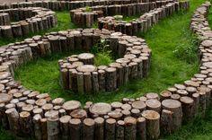 tree stump maze