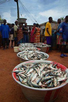 Fish market in Ghana, Africa.