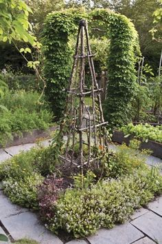 Twig Trellis | twig trellis creates a focal point and supports pole beans ...