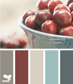 Love the colours, especially the red.  Adore this for a living room. gray walls, dark gray and white furniture, turquoise coffee table and pillows, red accents. love, love, love, love    Living room, family room colors