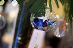 Beautiful Hanging Bubbles  Little Flower Shop