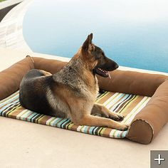 Cool Indoor/Outdoor Pet Bed.  Innovative thermo-regulating dog cooler technology cools the water filled pad and absorbs body heat!