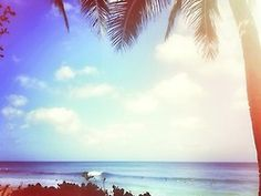 Pretty Paradise