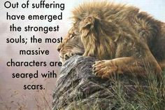 The strongest souls have scars