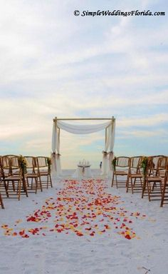 Brown bamboo chairs, our bamboo canopy with draped fabric, and sunflower aisle decorations really make this Florida beach wedding on Pass-a-Grille stand out!