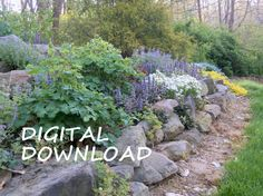 Need a garden plan? Visit: https://www.etsy.com/listing/254535568/digital-plan-for-perennial-garden-rock?ref=shop_home_active_7