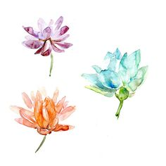 SIGNED and numbered giclee art prints of lotusflowers.    My work is based on the Zen drawing technique. Learn how to use this and read my PDF eBooks!