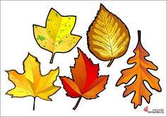 Imagini pentru frunze colorate de toamna de decupat Rooster, Diy And Crafts, Projects To Try, Autumn, Halloween, Animals, Alphabet, Teacher, School