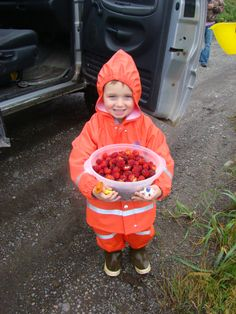 Salmonberry Picking