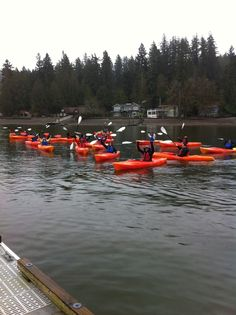 Great times kayaking on the Hood Canal. These kayakers are departing from Alderbrook Resort
