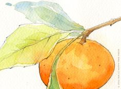 "Watercolor Painting- Fruit Print: ""Tangerine"" (5x7). $15.00, via Etsy."