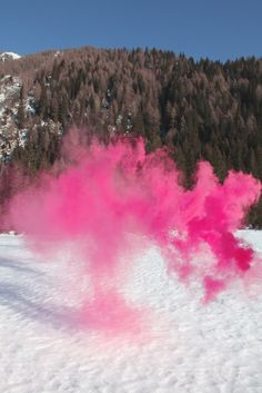 Pink Snow Monster on Snow in Woods ------ trees --- Silence/Shapes 20 by Filippo Minelli   Artfinder