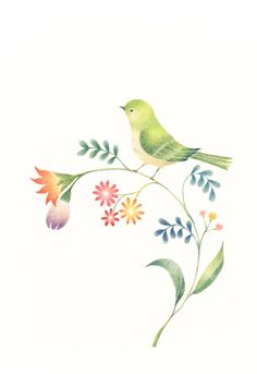 """""""Little Green Bird and Flowers"""" −RiLi, picture book, illustration, design ___ """"緑色の小鳥と草花"""" −リリ, 絵本, イラスト, デザイン ...... #illustration #bird #green #flower #イラスト #鳥 #緑 #花"""