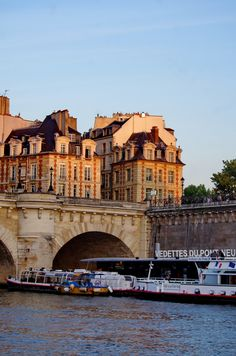 https://flic.kr/p/B1kdtZ | Paris Juin 2014, croisière sur la Seine - 96 l'île de la Cité et le Pont Neuf