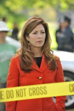 'Body of Proof' may survive ABC's cancellation TNT and WGN said to be interested in keeping the Dana Delany series alive