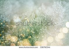 Christmas Lights Stock Photos, Images, & Pictures | Shutterstock