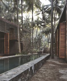 Paradise Backyard: Studio Mumbai
