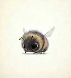 Animal Drawings Overwhelmingly Cute Animal Illustrations by Sydney Hanson - I've stumbled upon some Overwhelmingly Cute Animal Illustrations by Sydney Hanson. Their cuteness will surely melt your tiny little hearts. Art And Illustration, Cute Animal Illustration, Animal Illustrations, Bumble Bee Illustration, Illustrations Posters, Cute Drawings, Animal Drawings, Scary Drawings, Drawing Animals