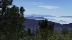 Stock video - http://www.alunablue.com - royalty free HD stock footage for broadcast, corporate promotions and all multimedia productions.   Forest 0201: Pine trees watch over mist in the California mountains.   A Luna Blue Stock Video.  Imagery for Your Imagination.