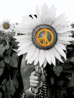 Flower Power: #Flower #Power. Hippie Peace, Happy Hippie, Hippie Love, Hippie Style, Hippie Chick, Hippie Things, Mundo Hippie, Estilo Hippie, Peace On Earth