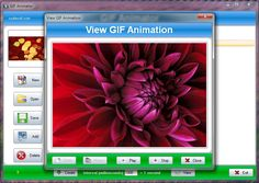 SSuite Office Gif Animator - An easy to use GIF animator, movie, and slide show creator.