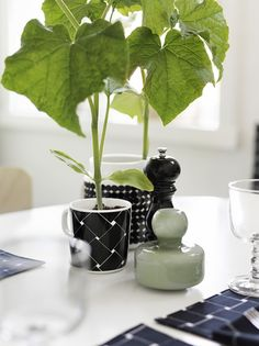 marimekko spring 2017 Basket design mug, so cool! Red Design, Glass Design, Design Shop, Marimekko, Modern Scandinavian Interior, Scandinavia Design, Henri Matisse, Flower Vases, Home Decor Inspiration