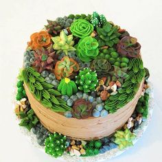 This week's Designer Spotlight goes to wonderful cake decorator Nanay Nikki for her mouth-watering Succulent Cake! Pretty Cakes, Cute Cakes, Beautiful Cakes, Amazing Cakes, Kaktus Cupcakes, Succulent Cupcakes, Buttercream Flowers, Buttercream Cake, Cake Icing