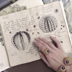 Russian Artist Opens Her Sketchbook To The World, Reveals Works Done With Incredible Attention To Detail