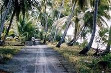 Road on one of the islands