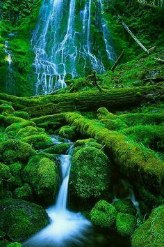 Que maravilla de cascada...hermosa!