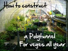 How to build a polytunnel in 6 minutes. In New Zealand we need to extend our growing season. Here's how to do it.