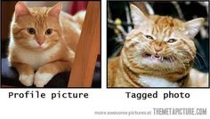 Hahaha! Damn near everytime.