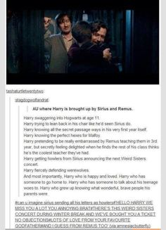 This would be awesome,harry potter au,Sirius Black,Remus Lupin Harry Potter Love, Harry Potter Universal, Harry Potter Fandom, Harry Potter Memes, Harry Potter Disney, Harry Potter Stories, Potter Facts, Sirius Black, Remus And Sirius