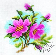 CROSS STITCH KITS - RTO - Cross Stitch Kits - Flowers - Dog Rose - Gvello Stitch