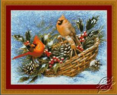 Holly Basket Cardinals