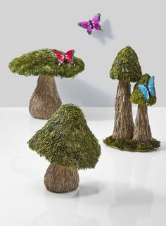 Create your own woodland garden for the holidays, or add a fairytale touch to your wedding decor or window display, with these straw mushrooms. The three unique shapes look great together showing off their dyed, mossy green caps and natural color stems. Add butterflies or some other woodland creatures to complete the look.