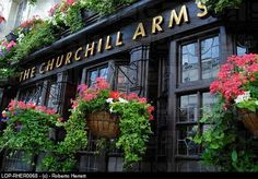 England, London, Notting Hill, Hanging flower baskets on the exterior of Churchill Arms --I love the flowers against the dark background.
