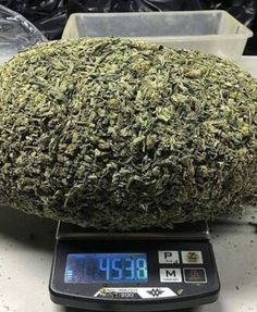 Weed Online Supplier is a fast and discreet place to Buy Marijuana/ Buy weed /Buy cannabis at affordable prices within USA and out of USA.Get the best with us as your satisfaction is our website at www.weedonlinesupplier dot com. call/text/whatsapp at 978 Cannabis Seeds For Sale, Buy Cannabis Online, Cannabis Oil, Indica Strains, Cannabis Edibles, Growing Marijuana Indoor, Marijuana Plants, Medical Marijuana, Weed