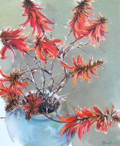 Erythrina Painting - x - Inside Out Home Boutique Coral Watercolor, Watercolor Paintings, Flower Art, Art Flowers, Beautiful Paintings, Wild Flowers, Cactus, Colours, Sketchbooks