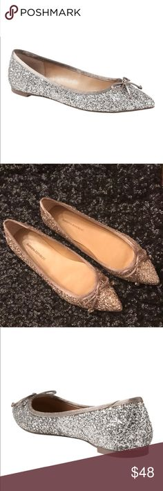 Banana Republic size 7 never worn glitter flats! Glamorous glitter flats from banana republic.  These flats were never worn.  They are size 7.  I wear between at 6.5 and 7 these are loose on the back of my heel.  Smoke free and pet free home! Banana Republic Shoes Flats & Loafers