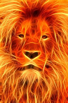 """""""Image of a Lions Flaming"""" One day, I was gazing idly at the flames in the fire when I saw a lion ..."""