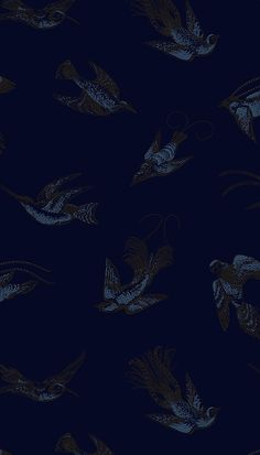 Tropical Birds Wallpaper Vintage 1950's exotic birds design by Una Lindsey. The print has been re-coloured in contemporary colours. Metallic blue and black print on a midnight blue background.